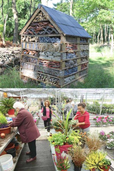 Atelier de jardinage à la pépinière Jeanne Horticulture