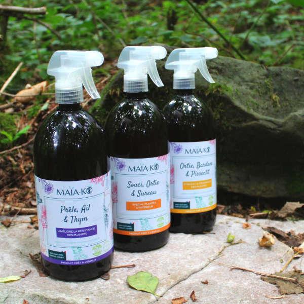 Les mélanges de plantes Maïa-Ko